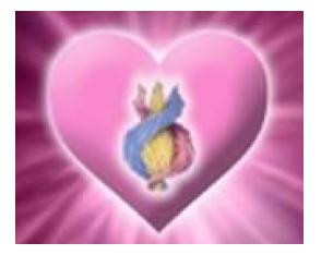 Vergroot de magneet van je Hart