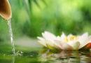 De Elementalen van het Water