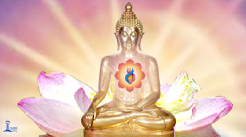 Buddha Way of Peace